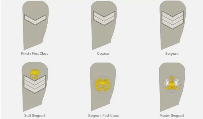 Nigeria Army Badges