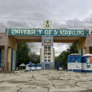 The ultimate guide to the University of Maiduguri (UNIMAID)