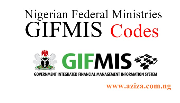 Government Integrated Financial Management Information System