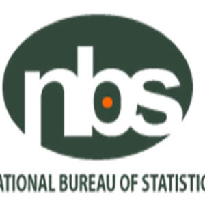 National bureau of statistics Nigeria (NBS): A thorough guide
