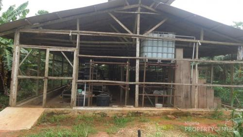 Poultry house in nigeria