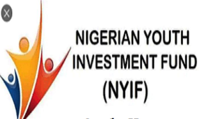 nigerian youth empowerment fund