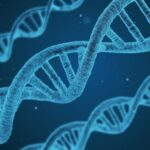 How much is dna test in nigeria. Things you must know