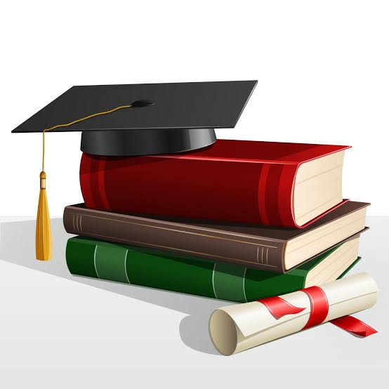 Best courses to study