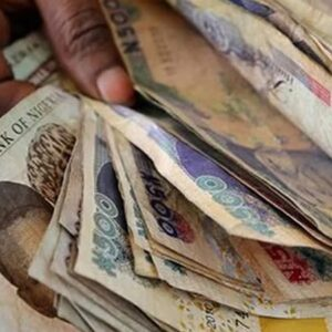 Top 7 Lucrative Daily Income Businesses in Abuja